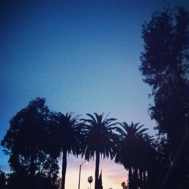 Thank you for another glorious 76 degree winter #SundayFunday !! #melrosetradingpost  #LA #February #sunset