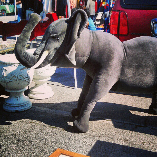 For those in the Market for a plush animatronic elephant, we've got you covered in B111. #Melrosetradingpost #fleamarket #elephant #animal #SundayFunday