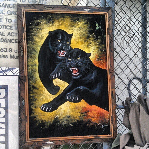 We LOVE this velvet Ortiz panther painting in B27!! #Melrosetradingpost #fleamarket #Ortiz #velvet #painting #art