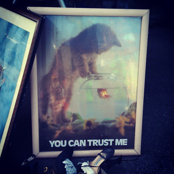 You Can Trust Me...#cat #kitten #fish #Melrosetradingpost #fleamarket #poster #1980 #vintage