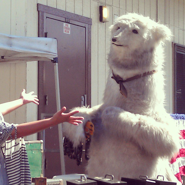 Have you hugged a polar bear lately? #Melrosetradingpost #fleamarket #losangeles #bear #polar #hug