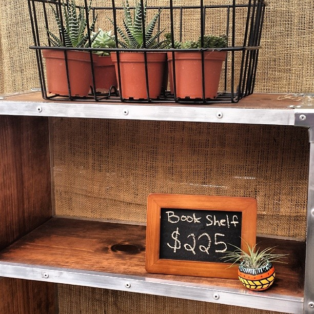 We love Marela's plants and furniture in G33!