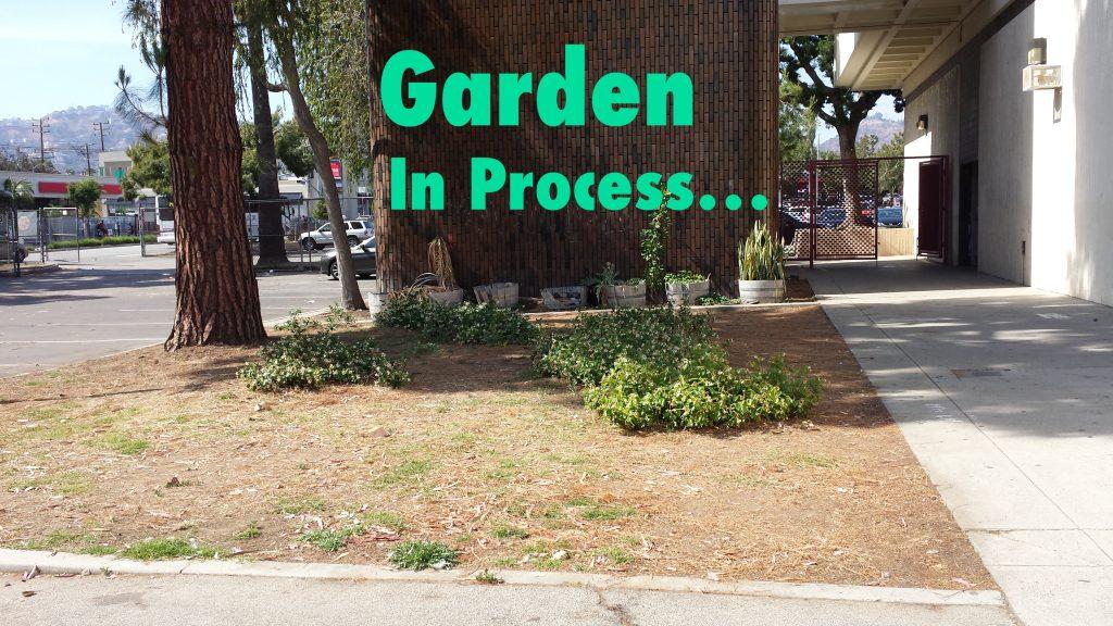 Garden Plot 1 copy
