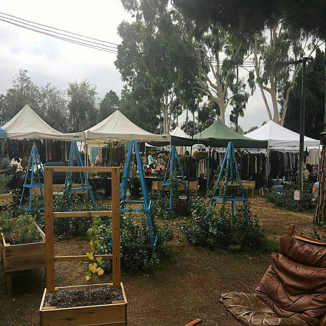 Thank you to @lvn1005 for posting this photo of the Fairfax Friendship Garden made through the #GreenwayGardening program! You can check out this space when you visit the market this and every Sunday! #winterinlosangeles #melrosetradingpost #greenwayarts #melrose #fairfax #fleamarket #losangeles #california #sundayfunday