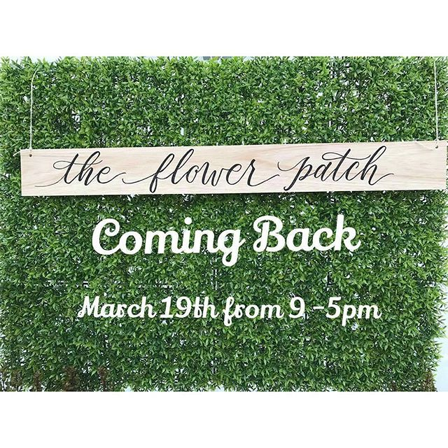Flower bouquets twice a month? Yes please! Catch @theflowerpatchla every 1st & 3rd Sundays of the month at #MelroseTradingPost! #happyspring #Melrose #Fairfax #fleamarket #losangeles #california #sundayinla #shoplocalla #SundayFunday #shoplocal #floraldesign #theflowerpatchla #flowerpower #bouquet