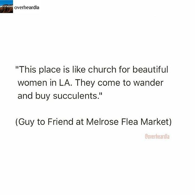 Overheard at the Melrose Trading Post.... #Welovela#Melrosetradingpost #Mtpfairfax #melrose #fairfax #fleamarket #losangeles #california #Sundayfunday #shoplocalla #sundayinla #shoplocal #overheardla