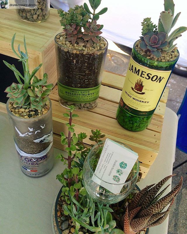 Spring is here! Grab an eco-friendly statement piece from @drunkensucculents to bring a little plant life into your life! Repost:Drunken Succulents at the @melrosetradingpost today! 🍾 were located at booth Y19 until 5pm!#Melrosetradingpost #Mtpfairfax #melrose #fairfax #fleamarket #losangeles #california #Sundayfunday #shoplocalla #sundayinla #shoplocal #drunkensucculents #ecofriendly #repurpose