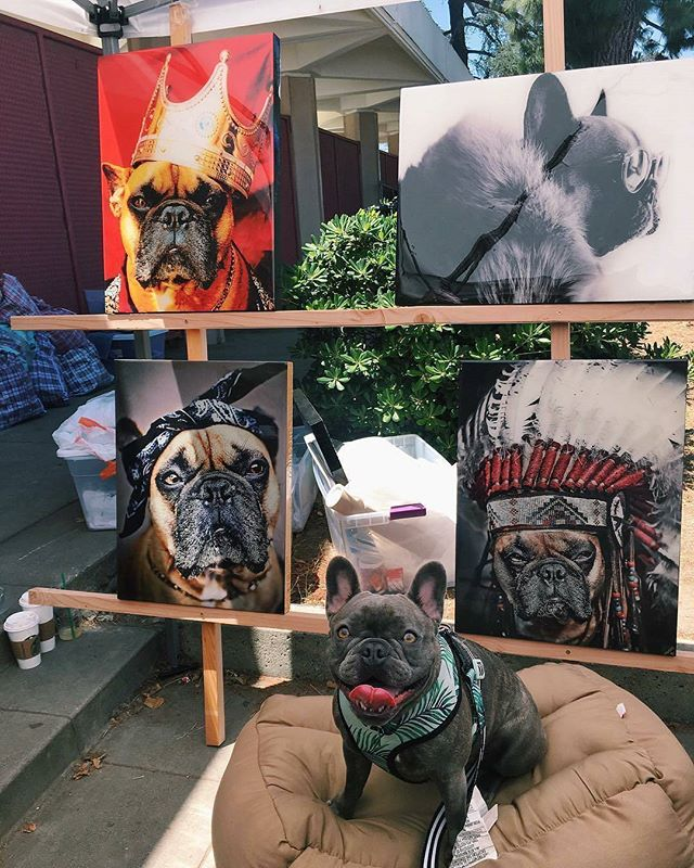 Melrose is for the dogs! #DogsofMTP#Repost from @frenchiegracie ... Ppl: do u even appreciate art or culture ???? dumb millennialMe:#melrosetradingpost #Mtpfairfax #melrose #fairfax #fleamarket #losangeles #california #Sundayfunday #shoplocalla #sundayinla #shoplocalla #sundayinla #shoplocal #dogsofinstagram #puppy #frenchiegracie #frenchie