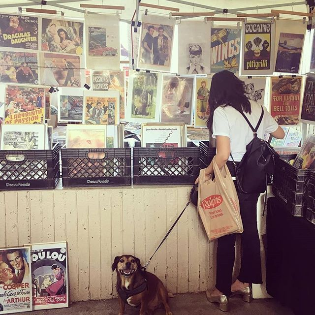 Are you and your besties ready for #Sundayfunday? ...Photo of @_ivana91 with📸: @katieters#DogsofMTP #MelroseTradingPost#sundayinla #shoplocalla #shoplocal #losangeles