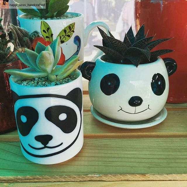 It is all smiles in the @happi_ness_handcrafted booth. Pick up a new #plantfriend today! Come see all the #pretty things. #pandabuddies ........#happinesshandcrafted #happiness #handcrafted #handmade #happy #panda #succulent #succulents #succulentjunkie #succulentobsession #succulentlove #market #smallbusiness #shoplocal #losangeles #melrosetradingpost #shop #summer #melrose #fairfax